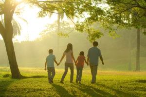 ファミリーツリー(家系図)のイメージ。夕日が差し込む木の下を、親子四人が手をつないで歩いている。