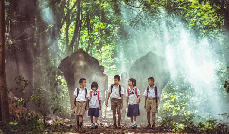 森を歩いて通学する小学生。教育水準の違いは、価値観の違いにつながる