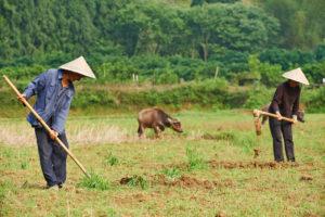 中国農村部の風景